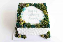Succulent Design Cake