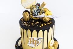 Wizarding Drip Cake